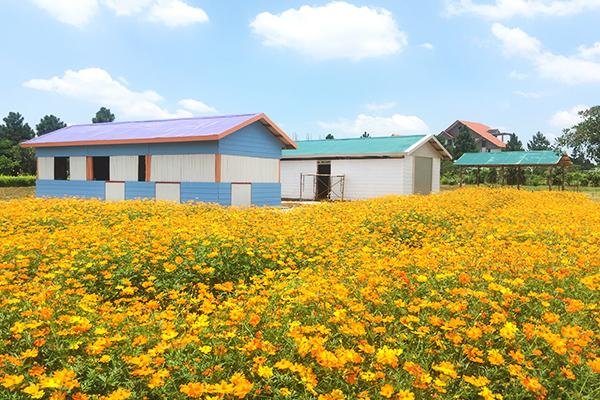 khu-nha-nghi-duong-the-phoenix-garden