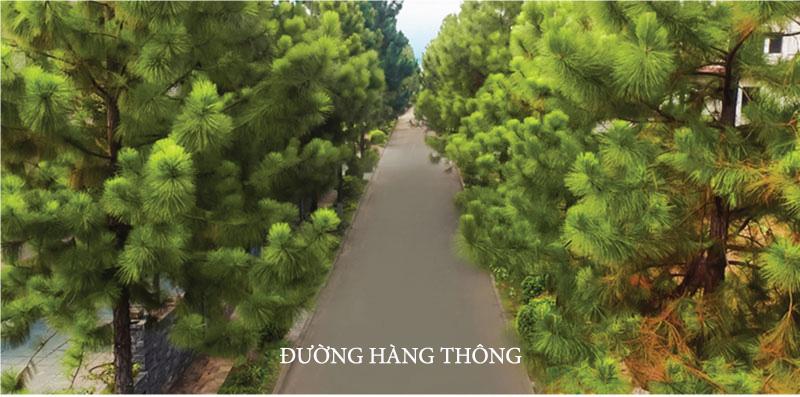 duong-hang-thong-dep-the-phoenix-garden